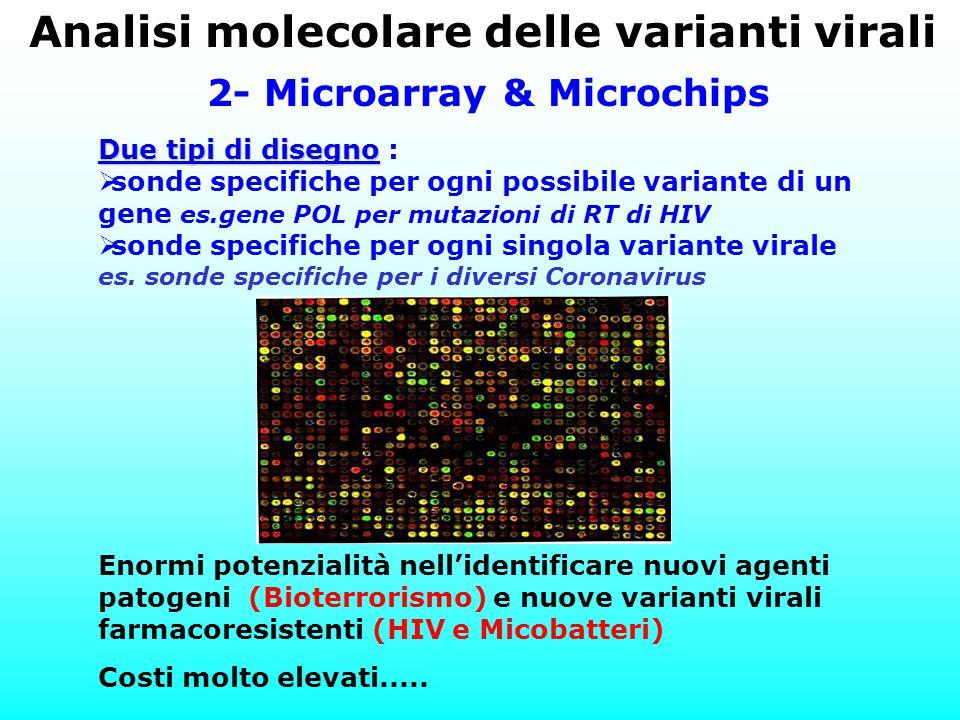 Analisi molecolare delle varianti virali 2- Microarray & Microchips Enormi potenzialità nell'identificare nuovi agenti patogeni (Bioterrorismo) e nuov