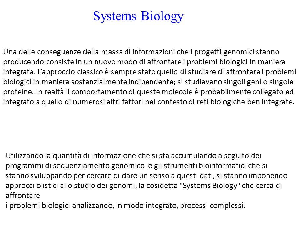 Systems Biology Utilizzando la quantità di informazione che si sta accumulando a seguito dei programmi di sequenziamento genomico e gli strumenti bioinformatici che si stanno sviluppando per cercare di dare un senso a questi dati, si stanno imponendo approcci olistici allo studio dei genomi, la cosidetta Systems Biology che cerca di affrontare i problemi biologici analizzando, in modo integrato, processi complessi.
