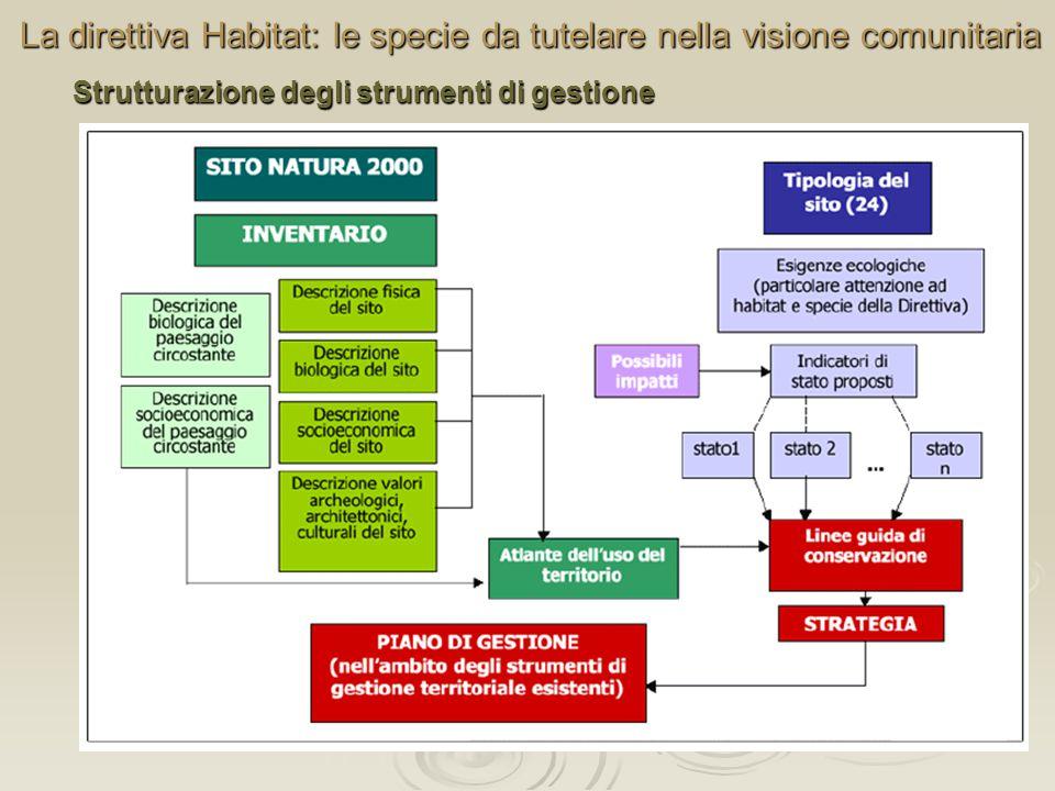 La direttiva Habitat: le specie da tutelare nella visione comunitaria Strutturazione degli strumenti di gestione