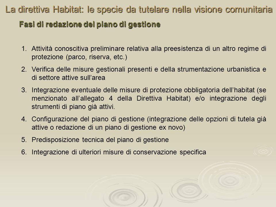 La direttiva Habitat: le specie da tutelare nella visione comunitaria Fasi di redazione del piano di gestione 1.Attività conoscitiva preliminare relativa alla preesistenza di un altro regime di protezione (parco, riserva, etc.) 2.Verifica delle misure gestionali presenti e della strumentazione urbanistica e di settore attive sull'area 3.Integrazione eventuale delle misure di protezione obbligatoria dell'habitat (se menzionato all'allegato 4 della Direttiva Habitat) e/o integrazione degli strumenti di piano già attivi.