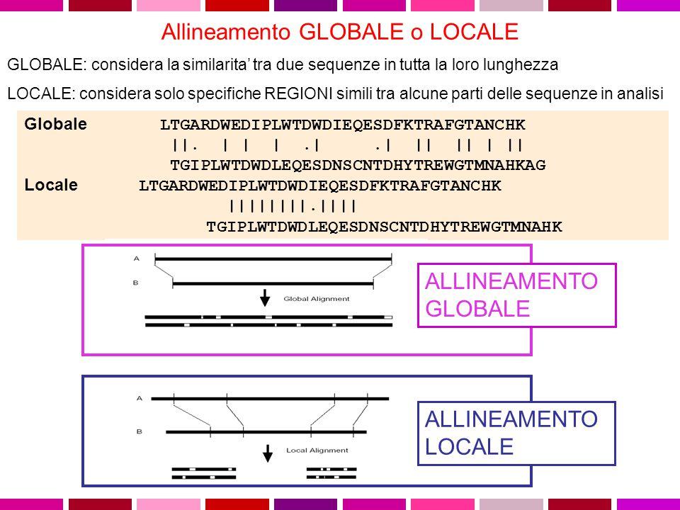 Allineamento GLOBALE o LOCALE GLOBALE: considera la similarita' tra due sequenze in tutta la loro lunghezza LOCALE: considera solo specifiche REGIONI simili tra alcune parti delle sequenze in analisi Globale LTGARDWEDIPLWTDWDIEQESDFKTRAFGTANCHK   .
