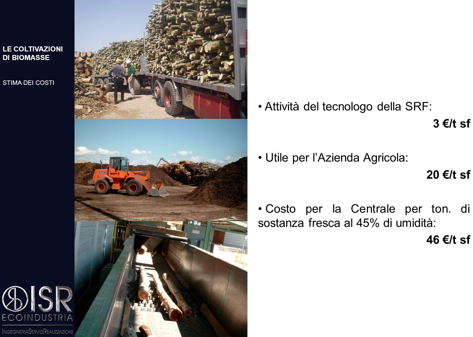 COSTI DELLE ATTIVITA' AGRICOLE COSTI DI PRODUZIONE SRF DI PIOPPO (tagli biennali) Produzione media verificata di SRF di pioppo (Scuola Superiore S.