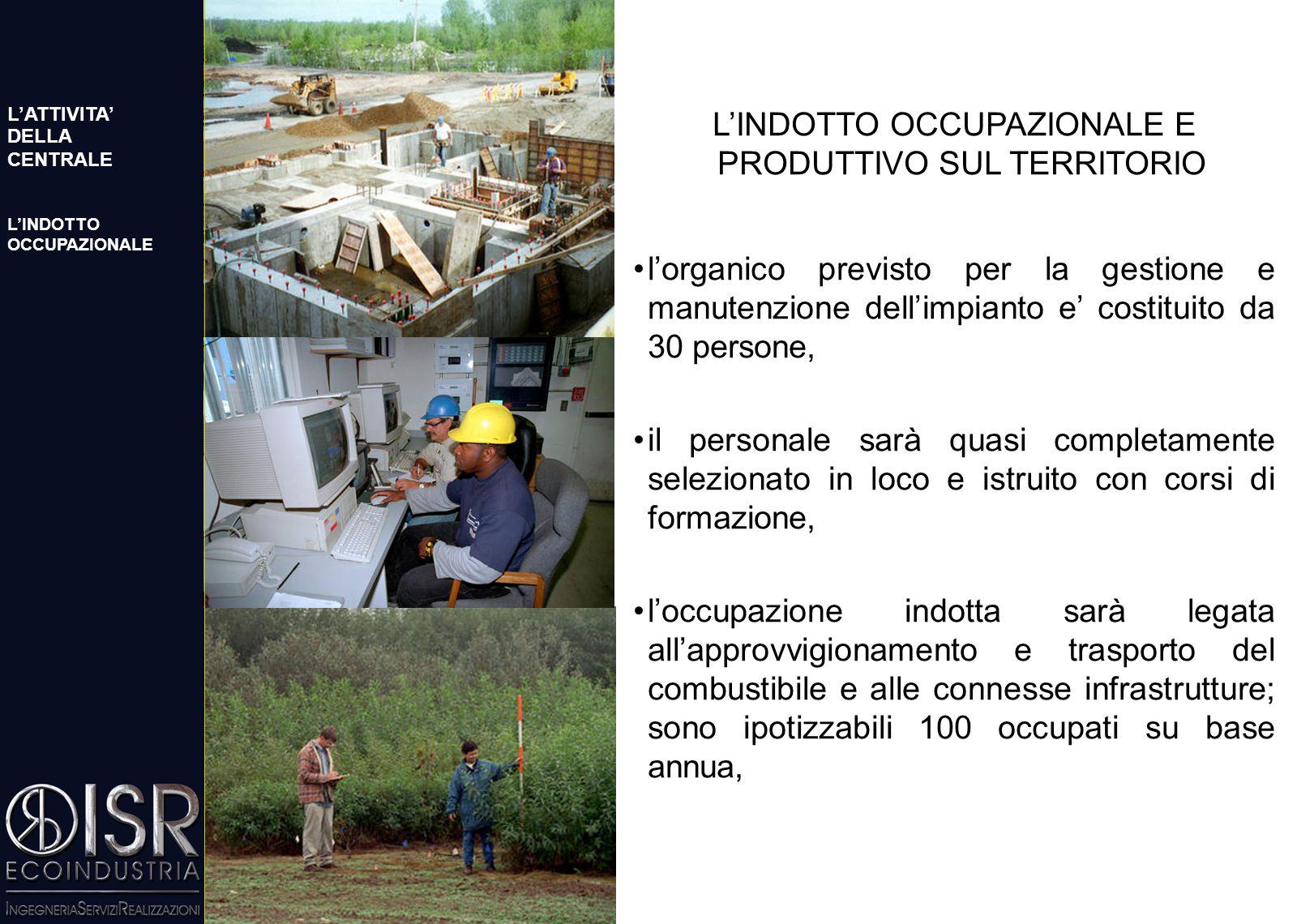 SHORT ROTATION FORESTRY: L'INDOTTO OCCUPAZIONALE La necessità di produzione di legname comporta un notevole indotto occupazionale nel settore primario, che contraddistingue le centrali a biomasse da quelle a combustibili tradizionali.