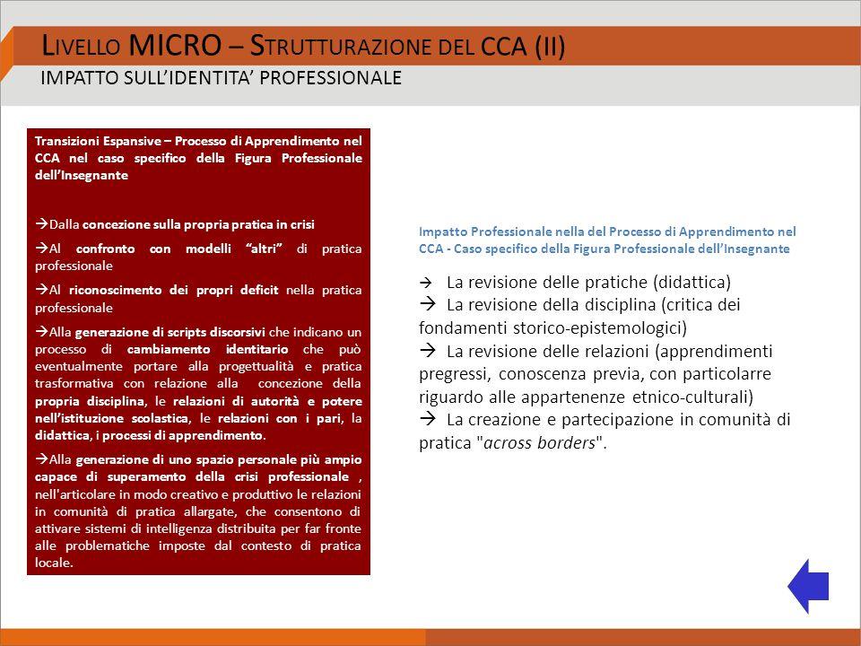 L IVELLO MICRO – S TRUTTURAZIONE DEL CCA (II) IMPATTO SULL'IDENTITA' PROFESSIONALE Transizioni Espansive – Processo di Apprendimento nel CCA nel caso