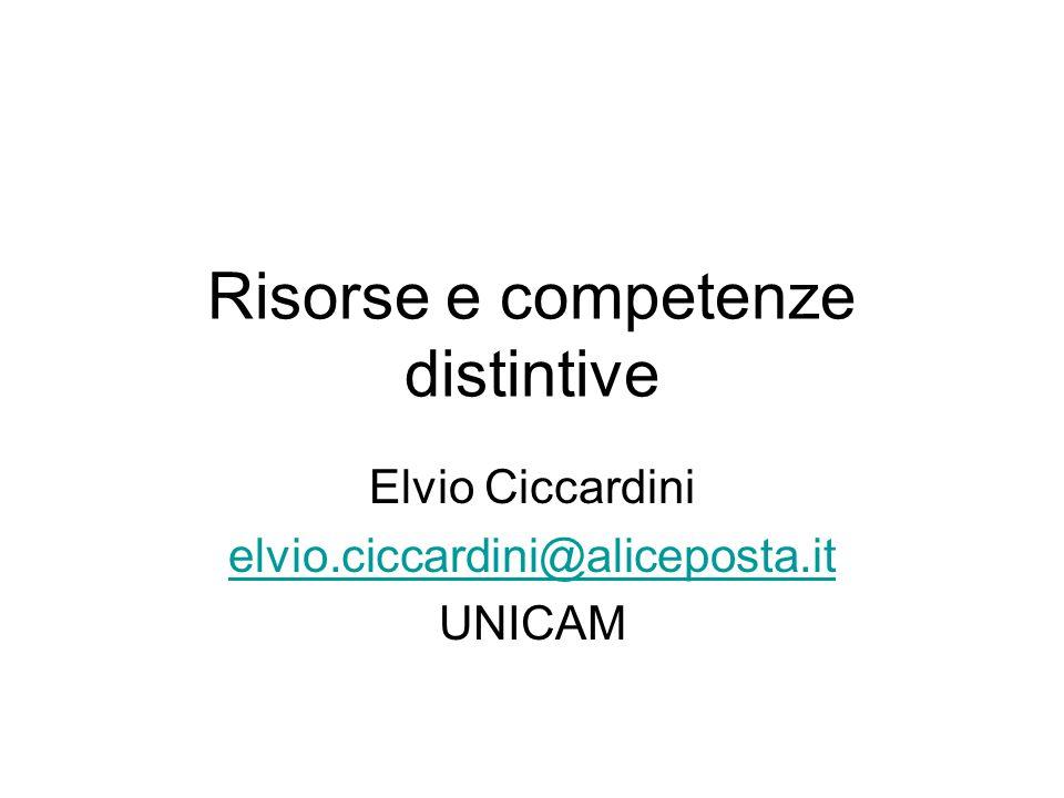 Risorse e competenze distintive Elvio Ciccardini elvio.ciccardini@aliceposta.it UNICAM