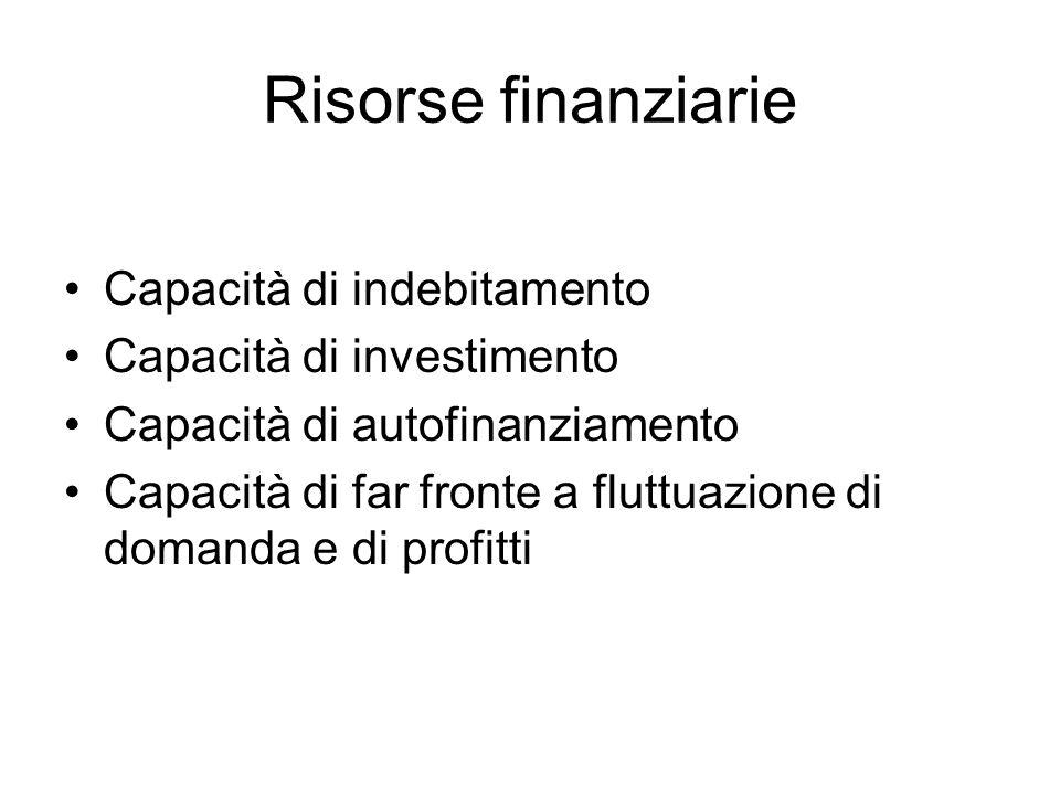 Risorse finanziarie Capacità di indebitamento Capacità di investimento Capacità di autofinanziamento Capacità di far fronte a fluttuazione di domanda e di profitti