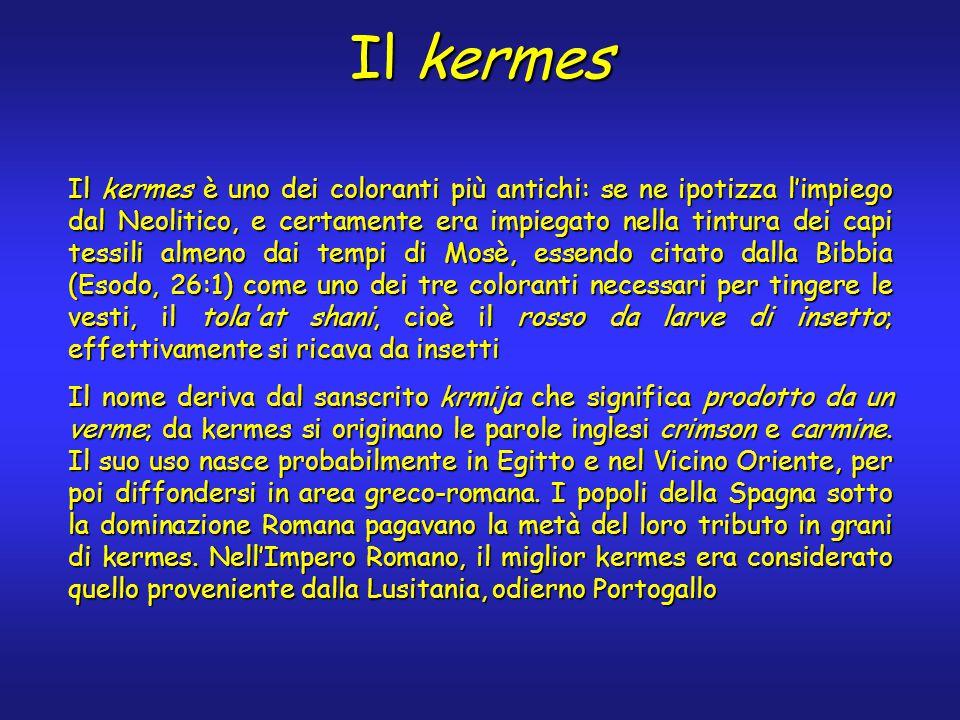 Il kermes Il kermes è uno dei coloranti più antichi: se ne ipotizza l'impiego dal Neolitico, e certamente era impiegato nella tintura dei capi tessili almeno dai tempi di Mosè, essendo citato dalla Bibbia (Esodo, 26:1) come uno dei tre coloranti necessari per tingere le vesti, il tola at shani, cioè il rosso da larve di insetto; effettivamente si ricava da insetti Il nome deriva dal sanscrito krmija che significa prodotto da un verme; da kermes si originano le parole inglesi crimson e carmine.