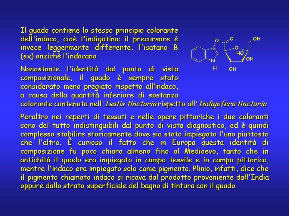 Il guado contiene lo stesso principio colorante dell indaco, cioè l indigotina; il precursore è invece leggermente differente, l isatano B (sx) anzichè l indacano Nonostante l identità dal punto di vista composizionale, il guado è sempre stato considerato meno pregiato rispetto all'indaco, a causa della quantità inferiore di sostanza colorante contenuta nell Isatis tinctoria rispetto all Indigofera tinctoria Peraltro nei reperti di tessuti e nelle opere pittoriche i due coloranti sono del tutto indistinguibili dal punto di vista diagnostico, ed è quindi complesso stabilire storicamente dove sia stato impiegato l uno piuttosto che l altro.