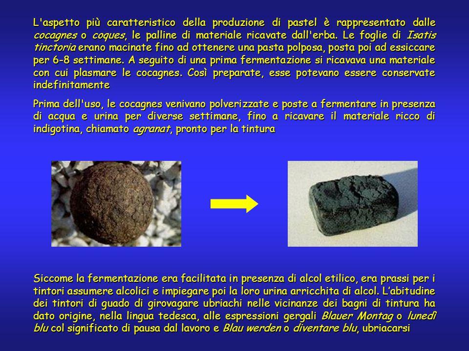 L aspetto più caratteristico della produzione di pastel è rappresentato dalle cocagnes o coques, le palline di materiale ricavate dall erba.