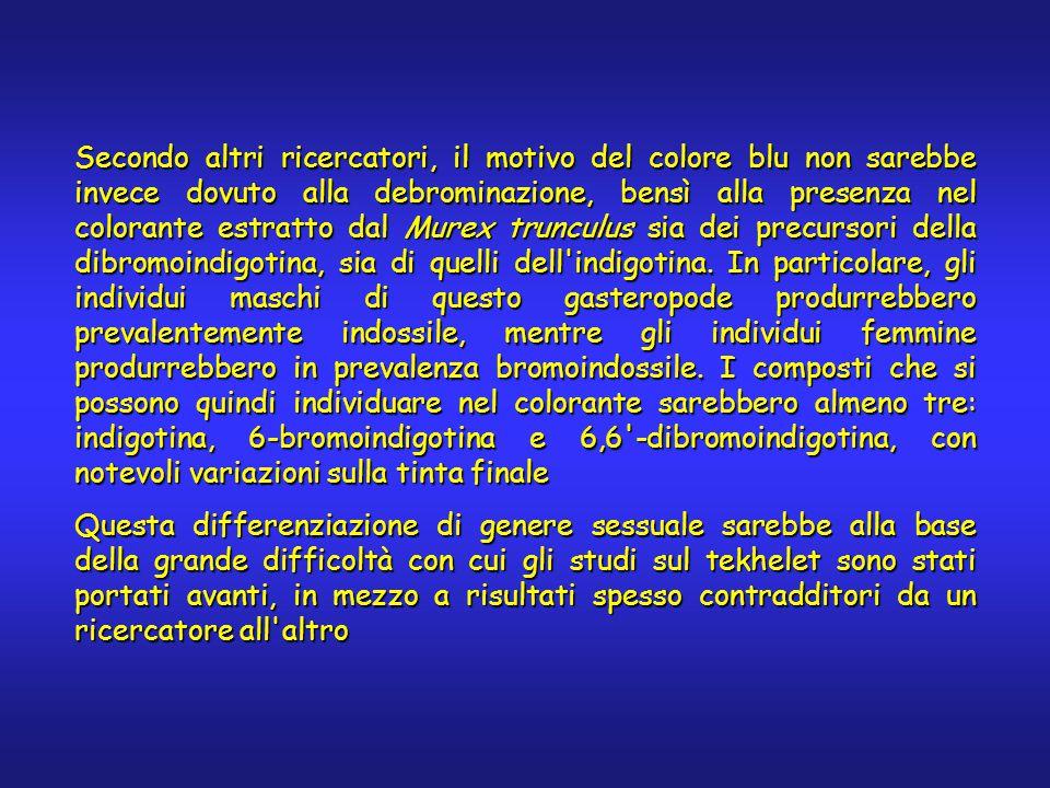 Secondo altri ricercatori, il motivo del colore blu non sarebbe invece dovuto alla debrominazione, bensì alla presenza nel colorante estratto dal Murex trunculus sia dei precursori della dibromoindigotina, sia di quelli dell indigotina.