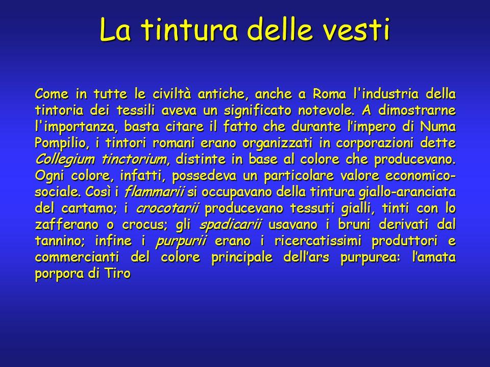 La tintura delle vesti Come in tutte le civiltà antiche, anche a Roma l industria della tintoria dei tessili aveva un significato notevole.