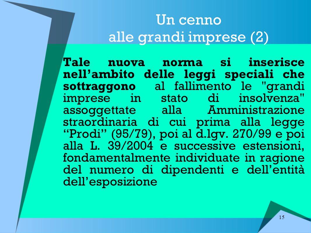 15 Un cenno alle grandi imprese (2) Tale nuova norma si inserisce nell'ambito delle leggi speciali che sottraggono al fallimento le grandi imprese in stato di insolvenza assoggettate alla Amministrazione straordinaria di cui prima alla legge Prodi (95/79), poi al d.lgv.