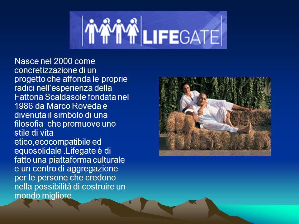 Nasce nel 2000 come concretizzazione di un progetto che affonda le proprie radici nell'esperienza della Fattoria Scaldasole fondata nel 1986 da Marco