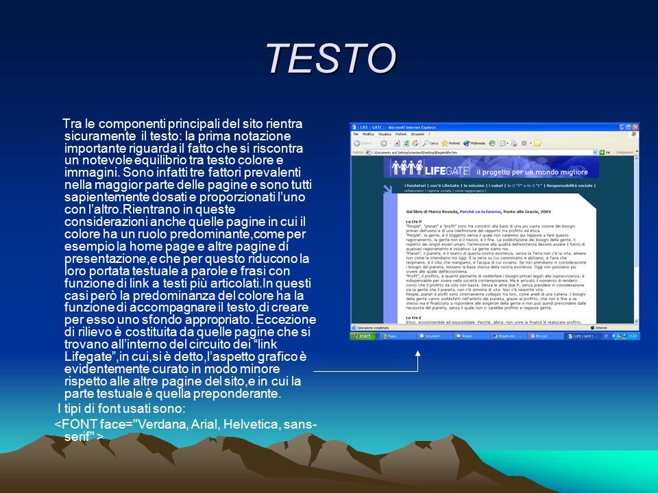 TESTO Tra le componenti principali del sito rientra sicuramente il testo: la prima notazione importante riguarda il fatto che si riscontra un notevole