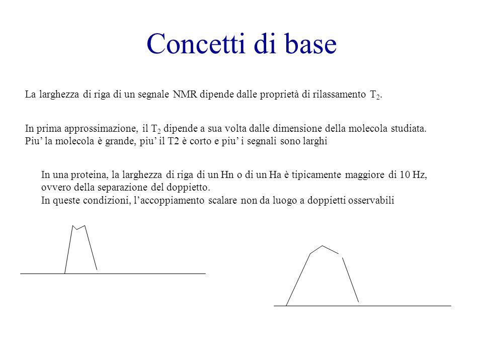 Concetti di base La larghezza di riga di un segnale NMR dipende dalle proprietà di rilassamento T 2. In prima approssimazione, il T 2 dipende a sua vo