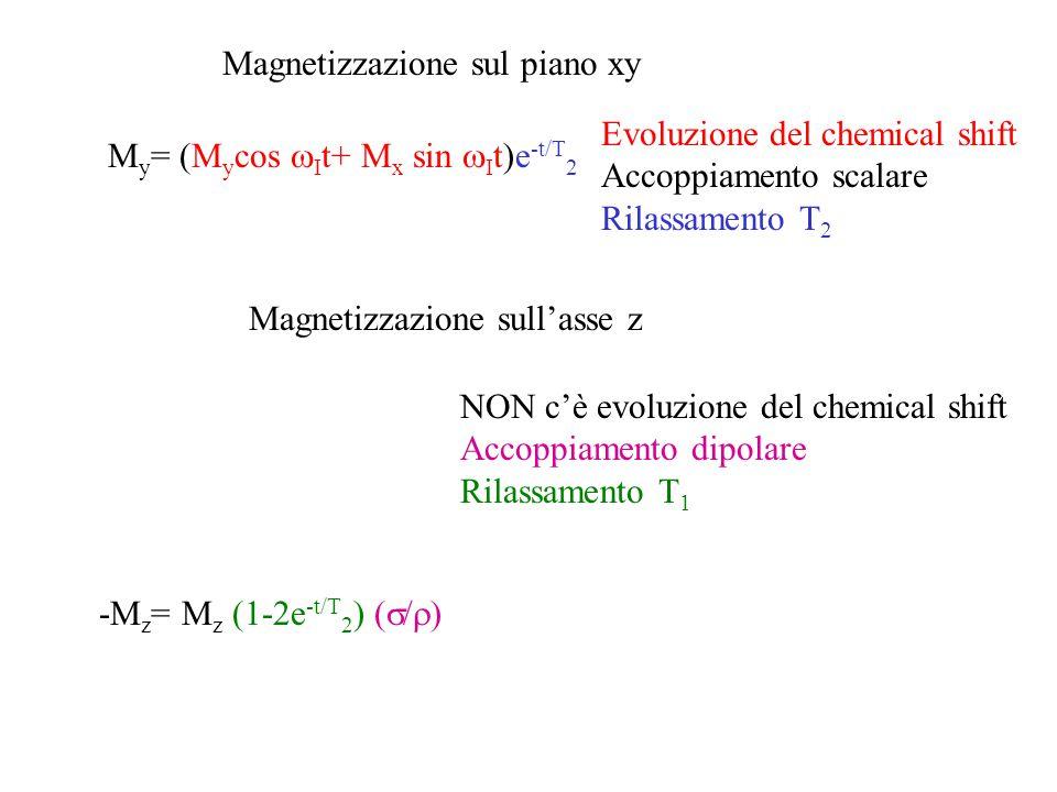 Magnetizzazione sul piano xy Evoluzione del chemical shift Accoppiamento scalare Rilassamento T 2 Magnetizzazione sull'asse z NON c'è evoluzione del c