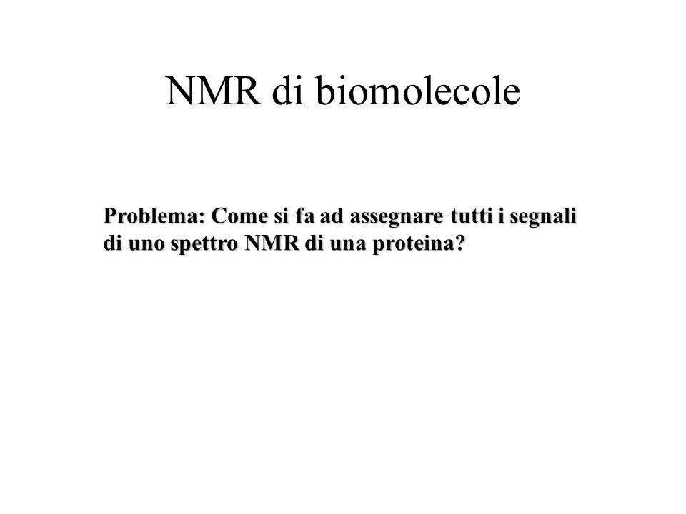 NMR di biomolecole Problema: Come si fa ad assegnare tutti i segnali di uno spettro NMR di una proteina?