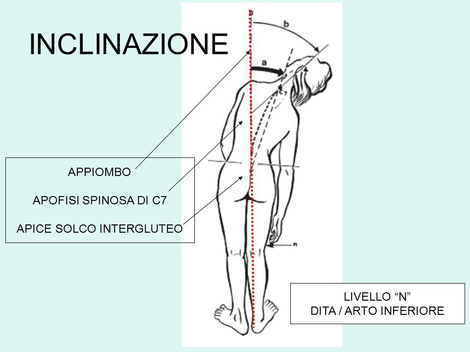 """APPIOMBO APOFISI SPINOSA DI C7 APICE SOLCO INTERGLUTEO LIVELLO """"N"""" DITA / ARTO INFERIORE INCLINAZIONE"""