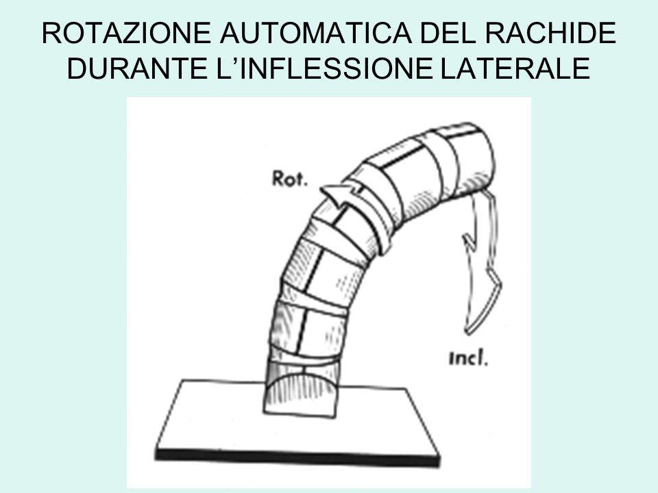 ROTAZIONE AUTOMATICA DEL RACHIDE DURANTE L'INFLESSIONE LATERALE