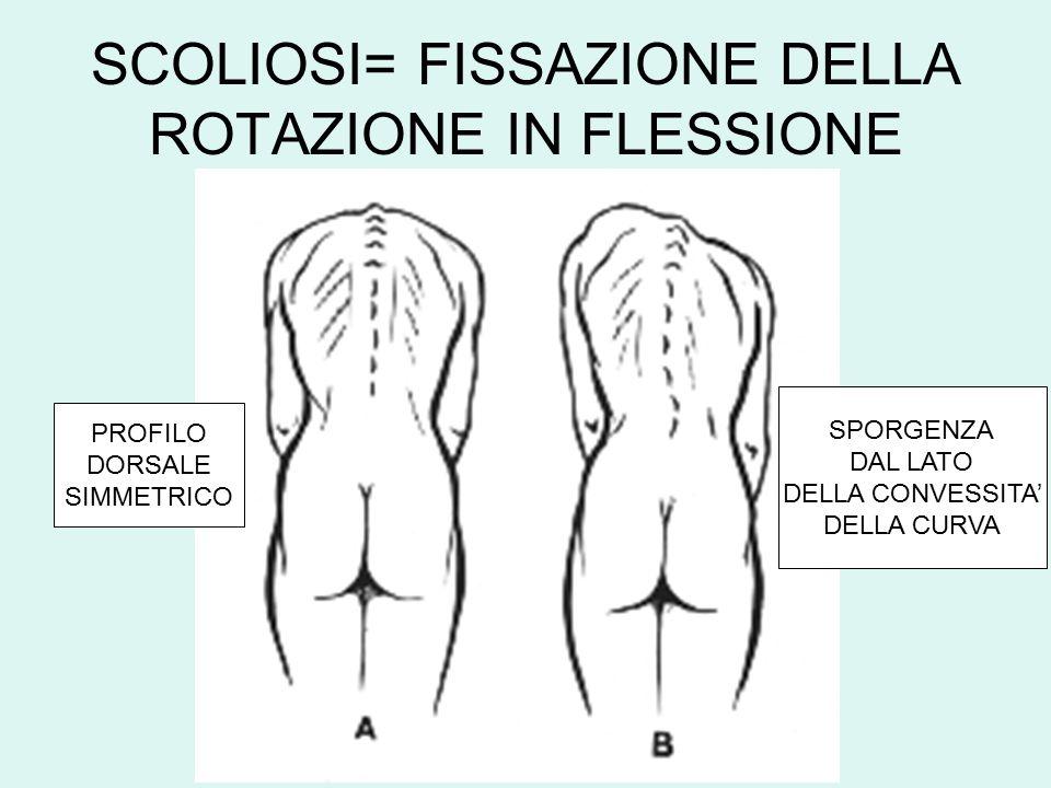 FLESSO-ESTENSIONE RACHIDEA PIANO MASTICATORIO