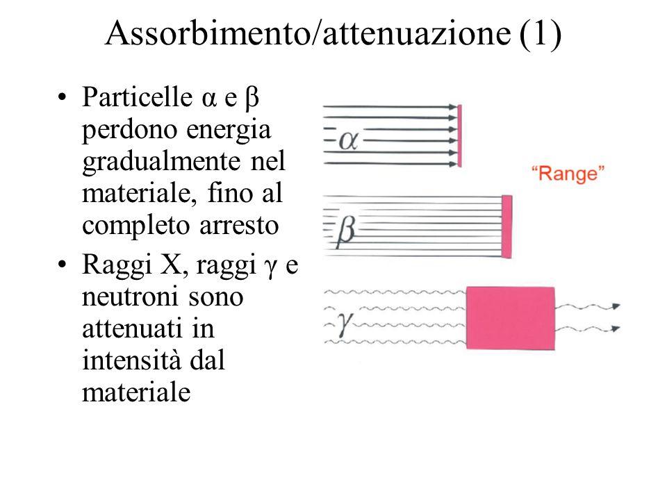 Assorbimento/attenuazione (1) Particelle α e β perdono energia gradualmente nel materiale, fino al completo arresto Raggi X, raggi γ e neutroni sono a