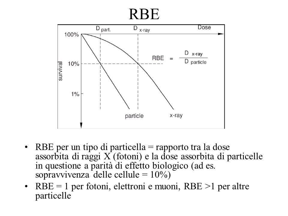 RBE RBE per un tipo di particella = rapporto tra la dose assorbita di raggi X (fotoni) e la dose assorbita di particelle in questione a parità di effe