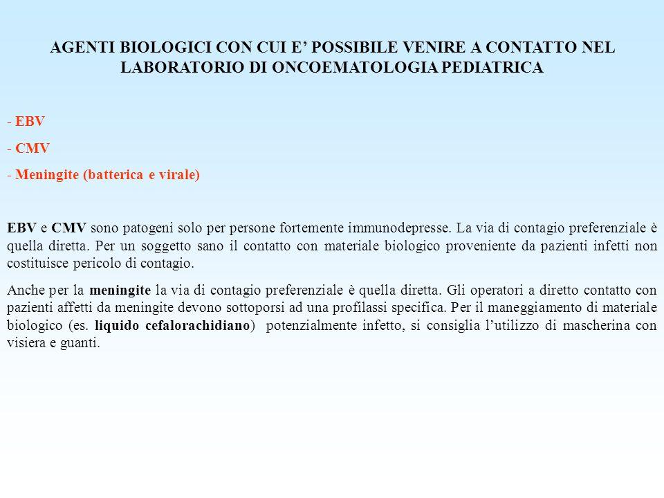AGENTI BIOLOGICI CON CUI E' POSSIBILE VENIRE A CONTATTO NEL LABORATORIO DI ONCOEMATOLOGIA PEDIATRICA - EBV - CMV - Meningite (batterica e virale) EBV