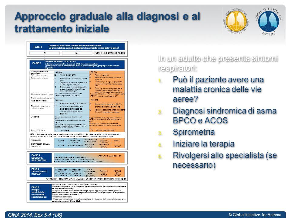 © Global Initiative for Asthma GINA 2014, Box 5-4 (1/6) Approccio graduale alla diagnosi e al trattamento iniziale In un adulto che presenta sintomi r