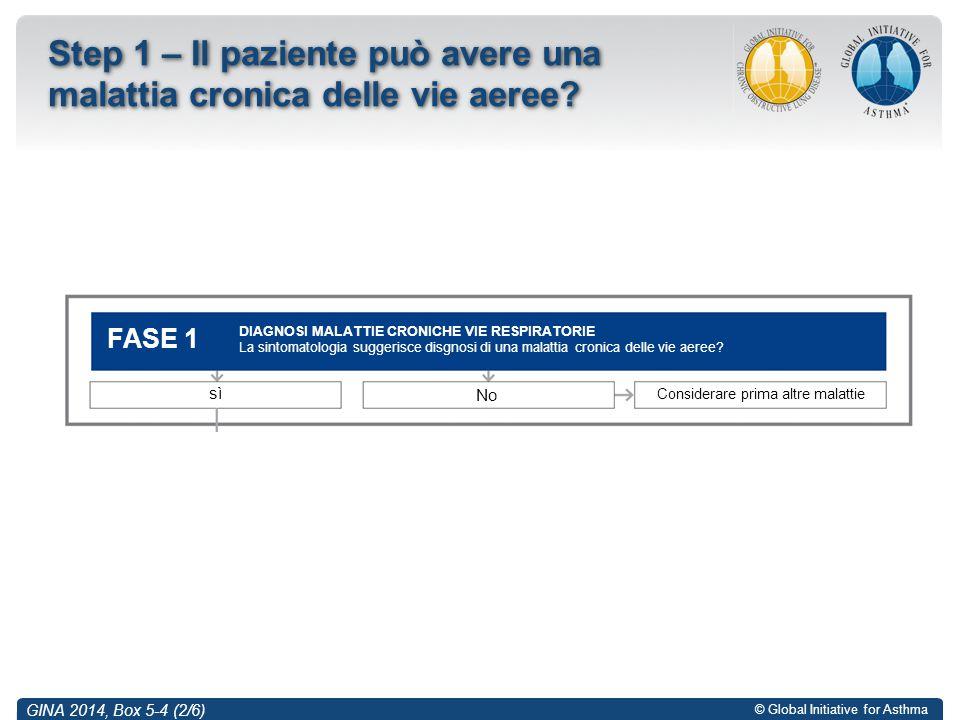 © Global Initiative for Asthma GINA 2014, Box 5-4 (2/6) Step 1 – Il paziente può avere una malattia cronica delle vie aeree? DIAGNOSI MALATTIE CRONICH