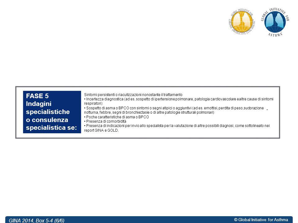 © Global Initiative for Asthma GINA 2014, Box 5-4 (6/6) FASE 5 Indagini specialistiche o consulenza specialistica se: Sintomi persistenti o riacutizza