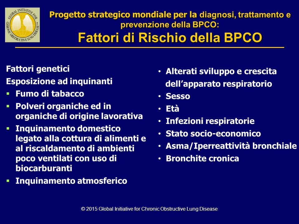 Progetto strategico mondiale per la diagnosi, trattamento e prevenzione della BPCO : Fattori di rischio della BPCO