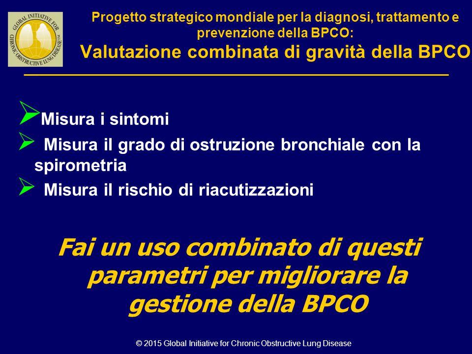 © 2015 Global Initiative for Chronic Obstructive Lung Disease Progetto strategico mondiale per la diagnosi, trattamento e prevenzione della BPCO: Valu
