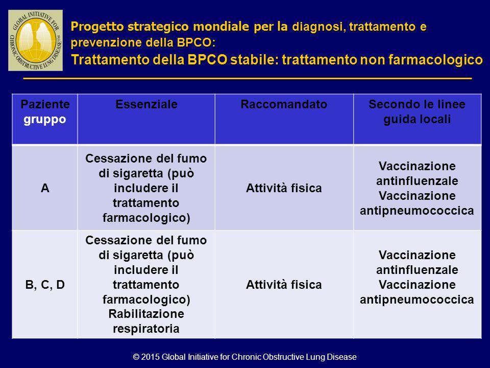 © 2015 Global Initiative for Chronic Obstructive Lung Disease Paziente gruppo EssenzialeRaccomandatoSecondo le linee guida locali A Cessazione del fum