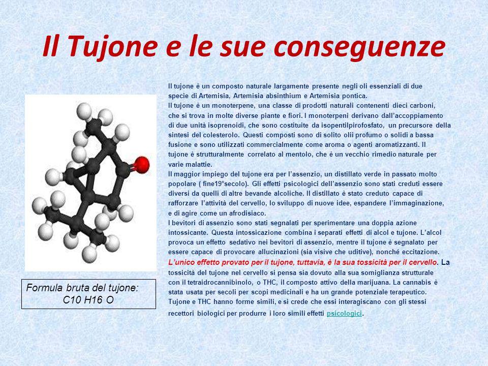 Il Tujone e le sue conseguenze Il tujone è un composto naturale largamente presente negli oli essenziali di due specie di Artemisia, Artemisia absinth