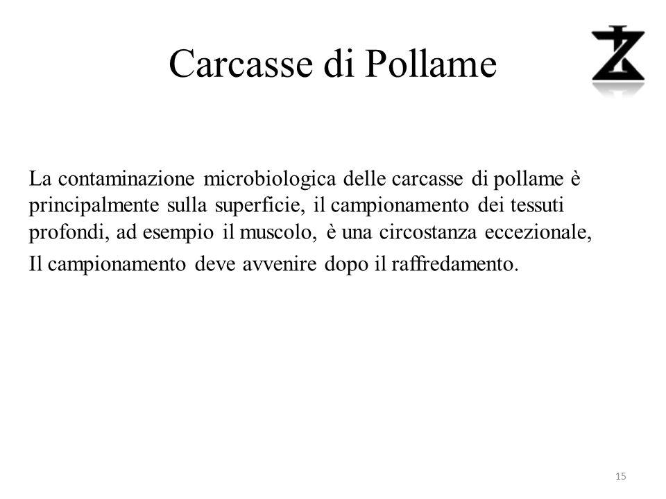 Carcasse di Pollame La contaminazione microbiologica delle carcasse di pollame è principalmente sulla superficie, il campionamento dei tessuti profond