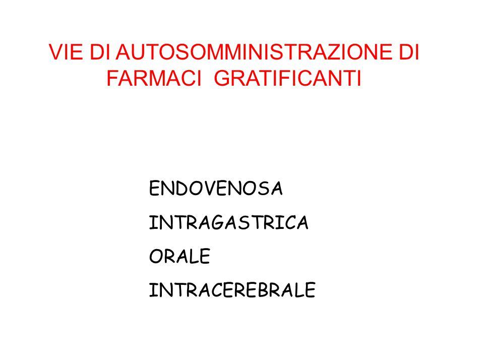 VIE DI AUTOSOMMINISTRAZIONE DI FARMACI GRATIFICANTI ENDOVENOSA INTRAGASTRICA ORALE INTRACEREBRALE