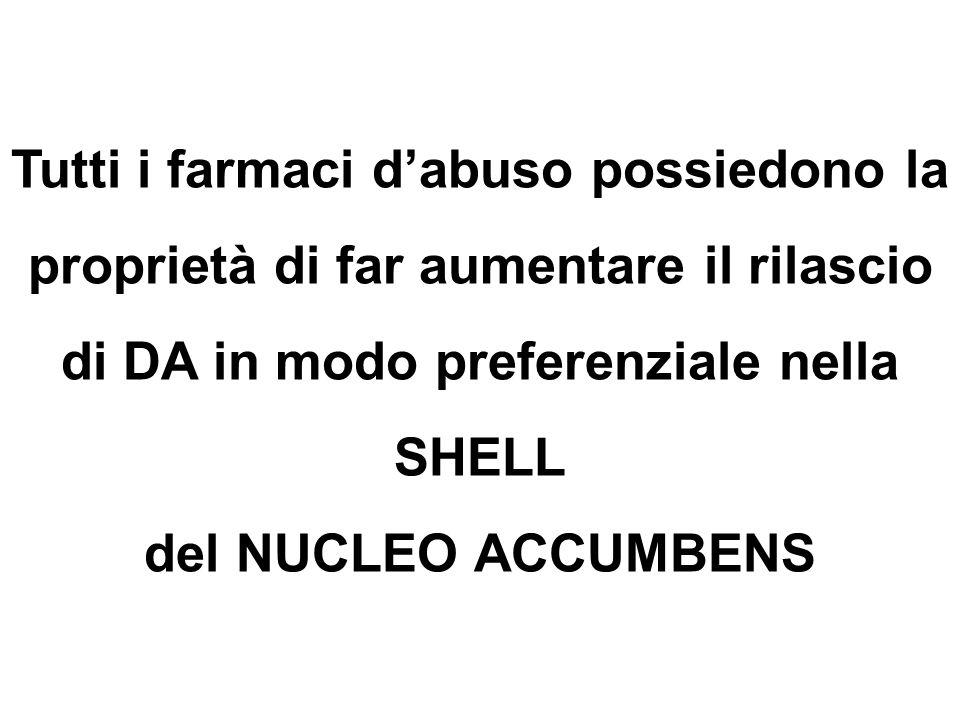 Tutti i farmaci d'abuso possiedono la proprietà di far aumentare il rilascio di DA in modo preferenziale nella SHELL del NUCLEO ACCUMBENS
