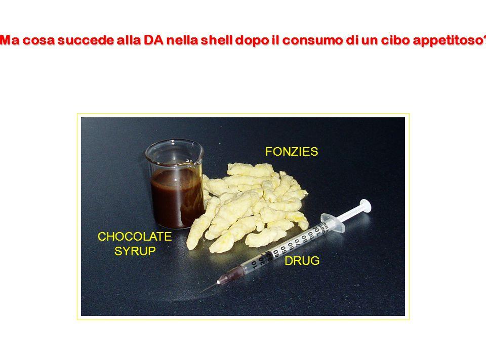 CHOCOLATE SYRUP FONZIES DRUG Ma cosa succede alla DA nella shell dopo il consumo di un cibo appetitoso?