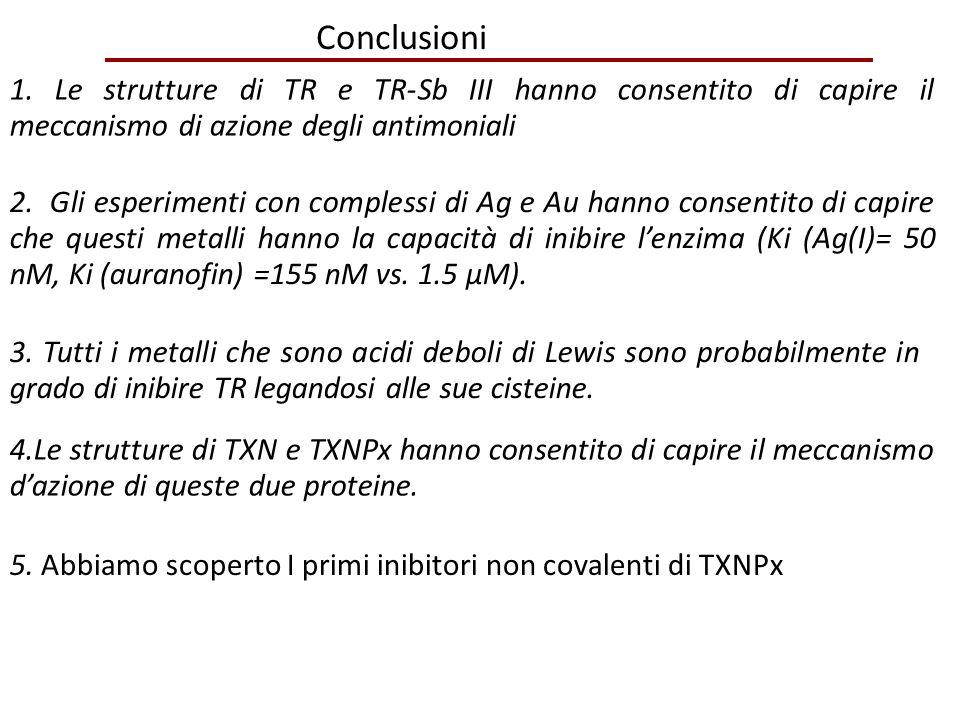 Conclusioni 1. Le strutture di TR e TR-Sb III hanno consentito di capire il meccanismo di azione degli antimoniali 2. Gli esperimenti con complessi di