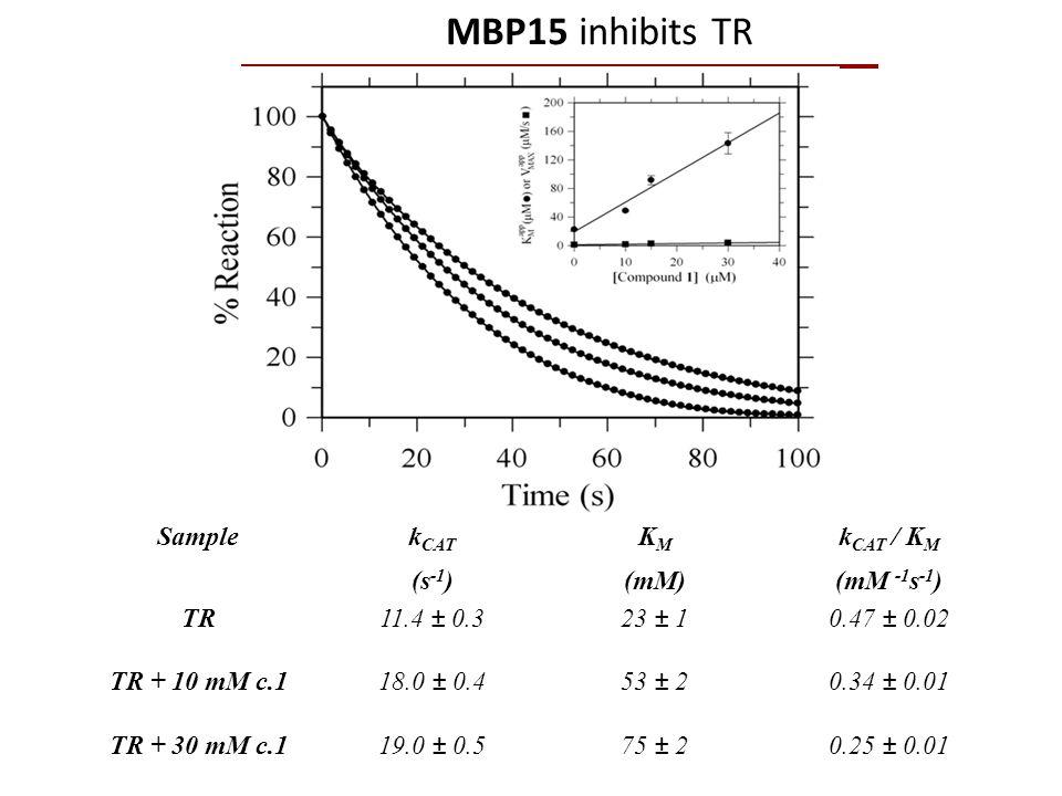 Samplek CAT (s -1 ) K M (mM) k CAT / K M (mM -1 s -1 ) TR11.4 ± 0.323 ± 10.47 ± 0.02 TR + 10 mM c.118.0 ± 0.453 ± 20.34 ± 0.01 TR + 30 mM c.119.0 ± 0.