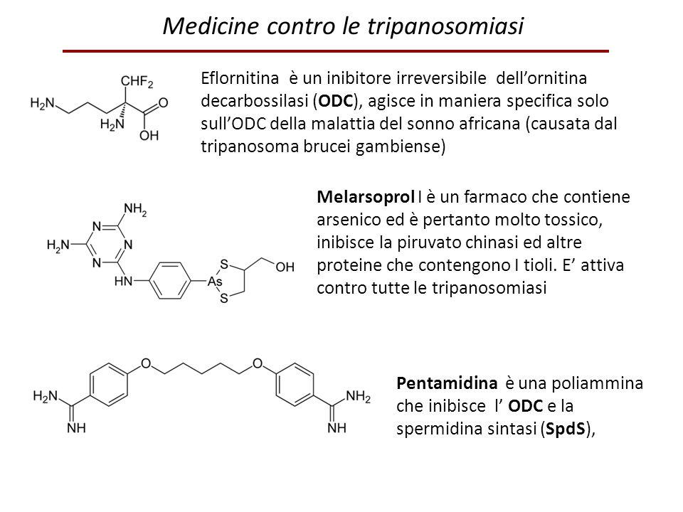 Eflornitina è un inibitore irreversibile dell'ornitina decarbossilasi (ODC), agisce in maniera specifica solo sull'ODC della malattia del sonno africa