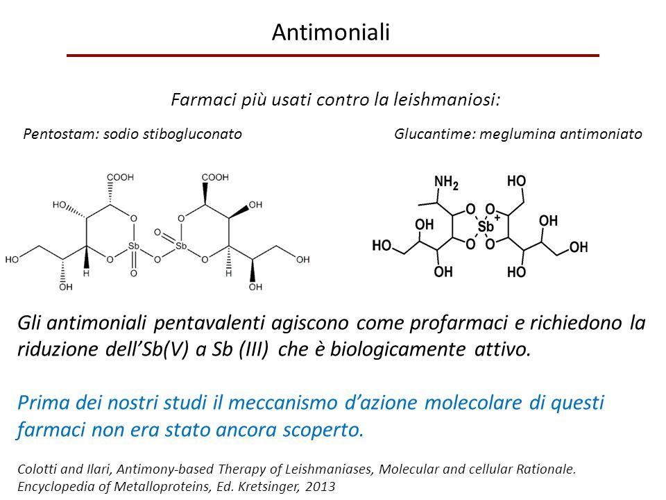 Antimoniali Farmaci più usati contro la leishmaniosi: Pentostam: sodio stibogluconato Glucantime: meglumina antimoniato Gli antimoniali pentavalenti a