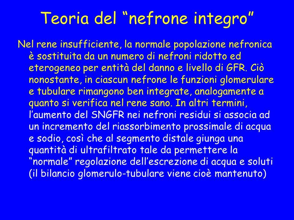 Teoria del nefrone integro Nel rene insufficiente, la normale popolazione nefronica è sostituita da un numero di nefroni ridotto ed eterogeneo per entità del danno e livello di GFR.