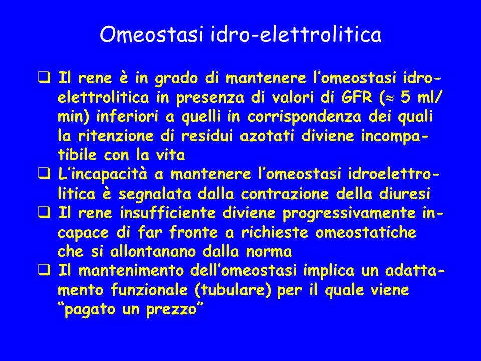 Omeostasi idro-elettrolitica  Il rene è in grado di mantenere l'omeostasi idro- elettrolitica in presenza di valori di GFR (  5 ml/ min) inferiori a quelli in corrispondenza dei quali la ritenzione di residui azotati diviene incompa- tibile con la vita  L'incapacità a mantenere l'omeostasi idroelettro- litica è segnalata dalla contrazione della diuresi  Il rene insufficiente diviene progressivamente in- capace di far fronte a richieste omeostatiche che si allontanano dalla norma  Il mantenimento dell'omeostasi implica un adatta- mento funzionale (tubulare) per il quale viene pagato un prezzo