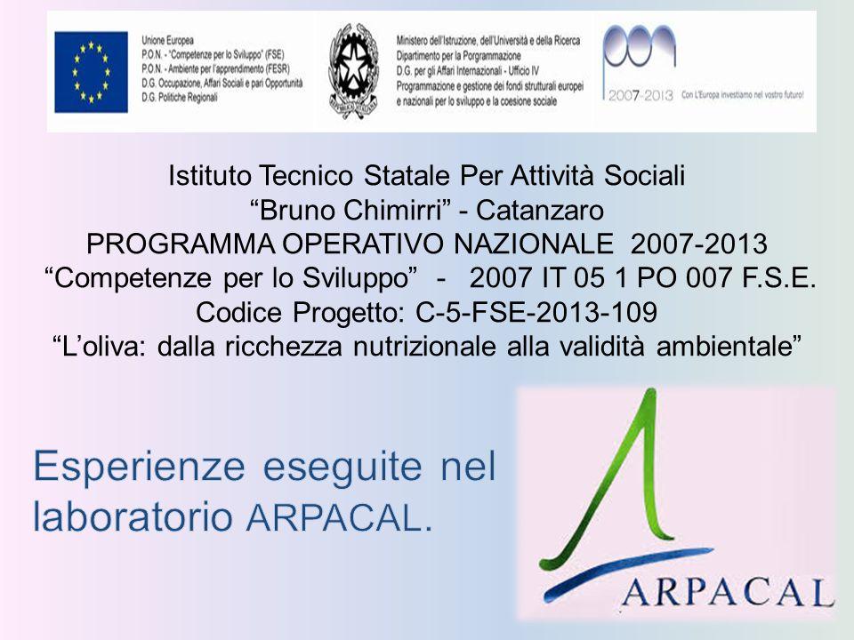"""Istituto Tecnico Statale Per Attività Sociali """"Bruno Chimirri"""" - Catanzaro PROGRAMMA OPERATIVO NAZIONALE 2007-2013 """"Competenze per lo Sviluppo"""" - 2007"""
