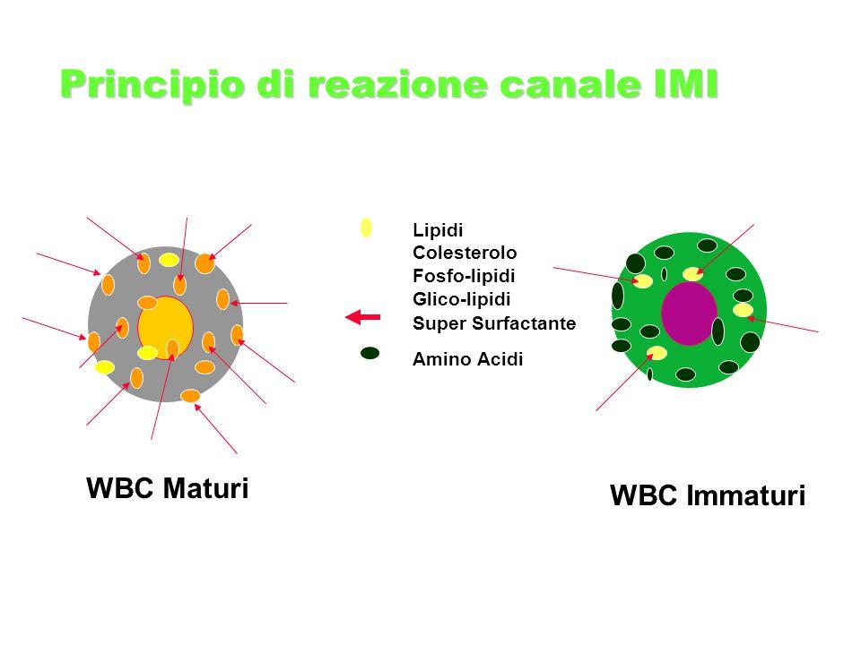 WBC Maturi WBC Immaturi Lipidi Colesterolo Fosfo-lipidi Glico-lipidi Super Surfactante Amino Acidi Principio di reazione canale IMI