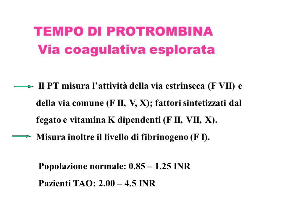 TEMPO DI PROTROMBINA Via coagulativa esplorata Il PT misura l'attività della via estrinseca (F VII) e della via comune (F II, V, X); fattori sintetizz