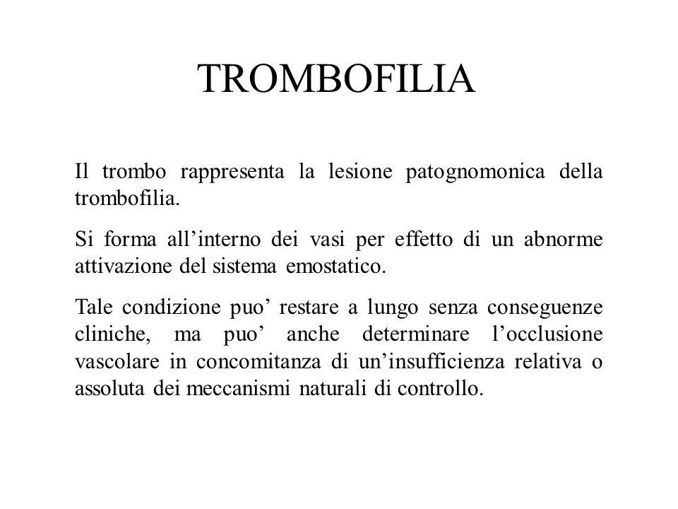 TROMBOFILIA Il trombo rappresenta la lesione patognomonica della trombofilia. Si forma all'interno dei vasi per effetto di un abnorme attivazione del