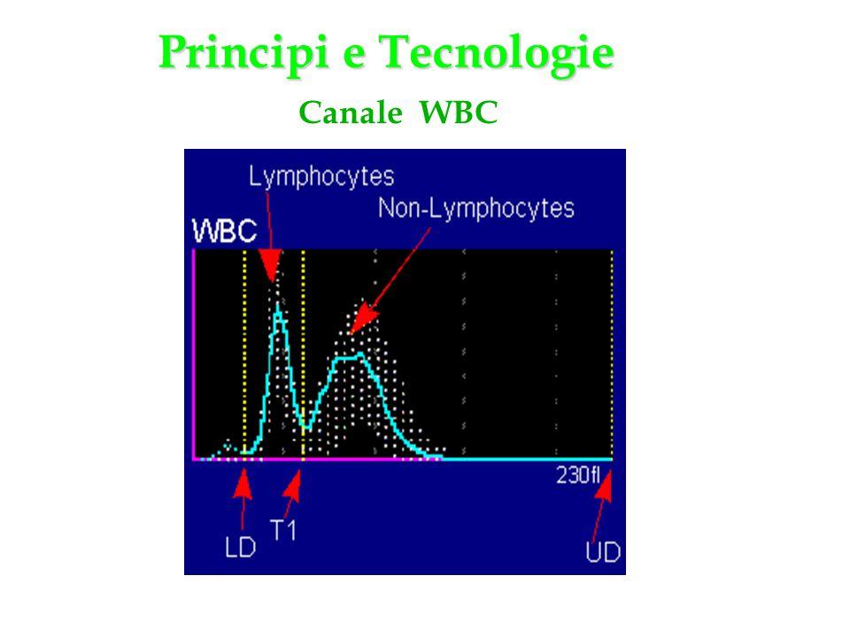 Canale WBC Principi e Tecnologie