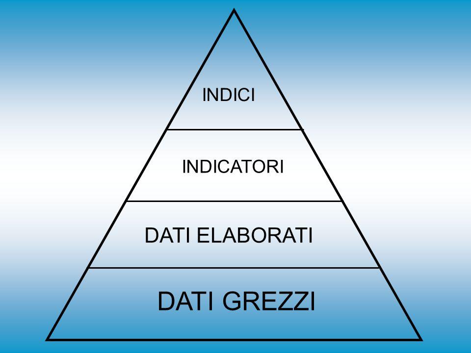 Nella Figura 1 è riportata la cosiddetta piramide dell'informazione alla cui base sono collocati i dati grezzi, ad un livello superiore si trovano i dati elaborati, che possono fornire informazioni di tipo statistico, quindi ad un livello ancora più elevato si trovano gli indicatori, che forniscono in maniera sintetica un certo numero di informazioni.